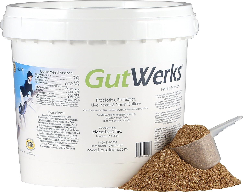 Luxury goods Horsetech Factory outlet GutWerks