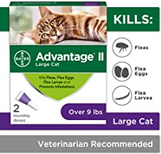 Best cats and flea treatment Reviews