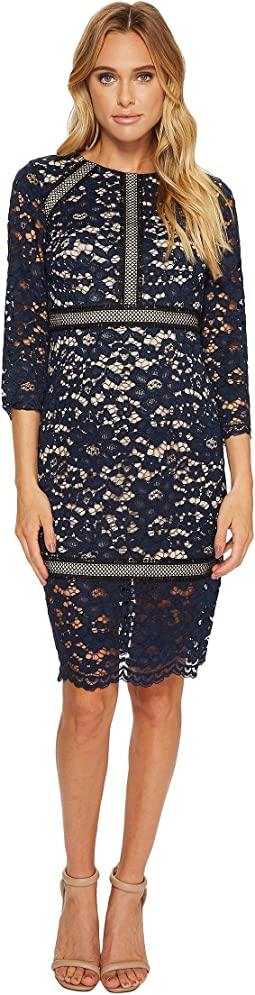 Vince Camuto - Lace 3/4 Sleeve Bodycon Dress