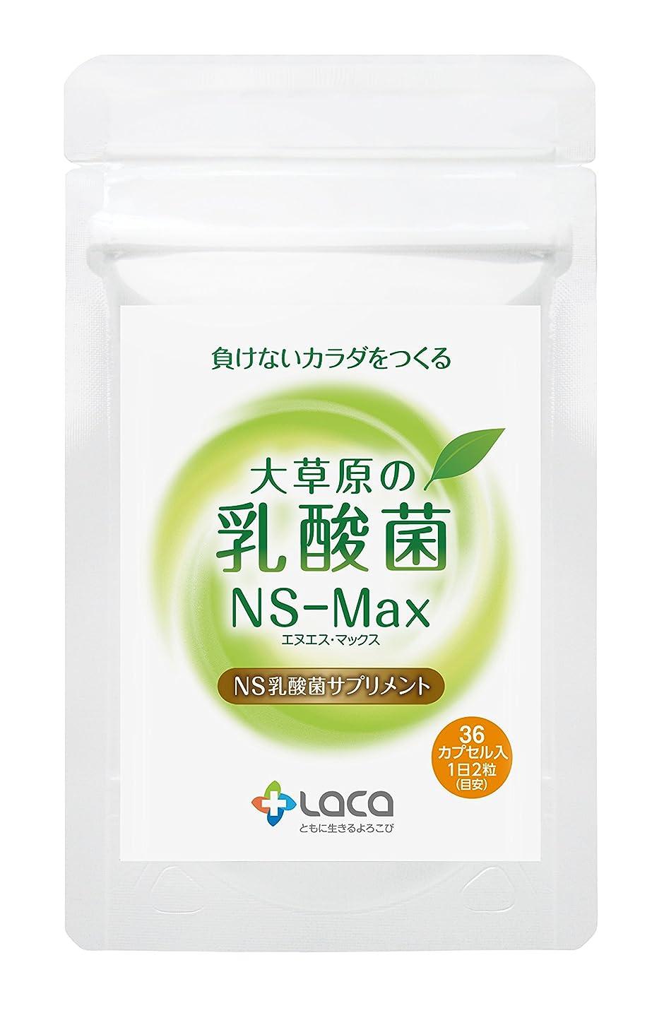 記事教室上大草原の乳酸菌NS-Max(36粒)