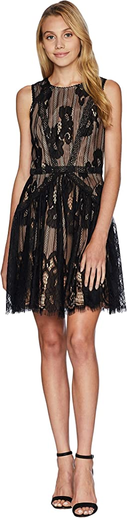 Trina Woven Lace Fit & Flare Dress