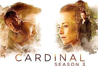 Cardinal, Season 3