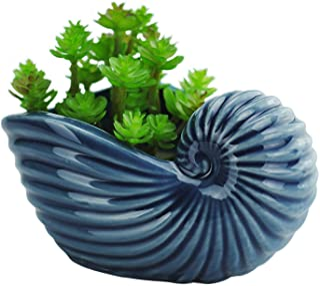 VanEnjoy 5 Ceramic Succulent Pot Cute Ocean Blue Seashell Series Cactus Pot Planter Flower Pot Pottery Bonsai Pot Natural ...