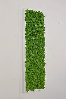 Quadro Vegetale - 70 x 20 cm - Verde 15