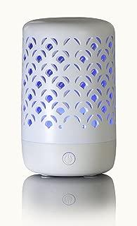 Greenair Nature's Remedy Trellis Essential Oil Aromatherapy Diffuser #625