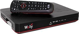 Pace International 1305908409 Dish Network Wally