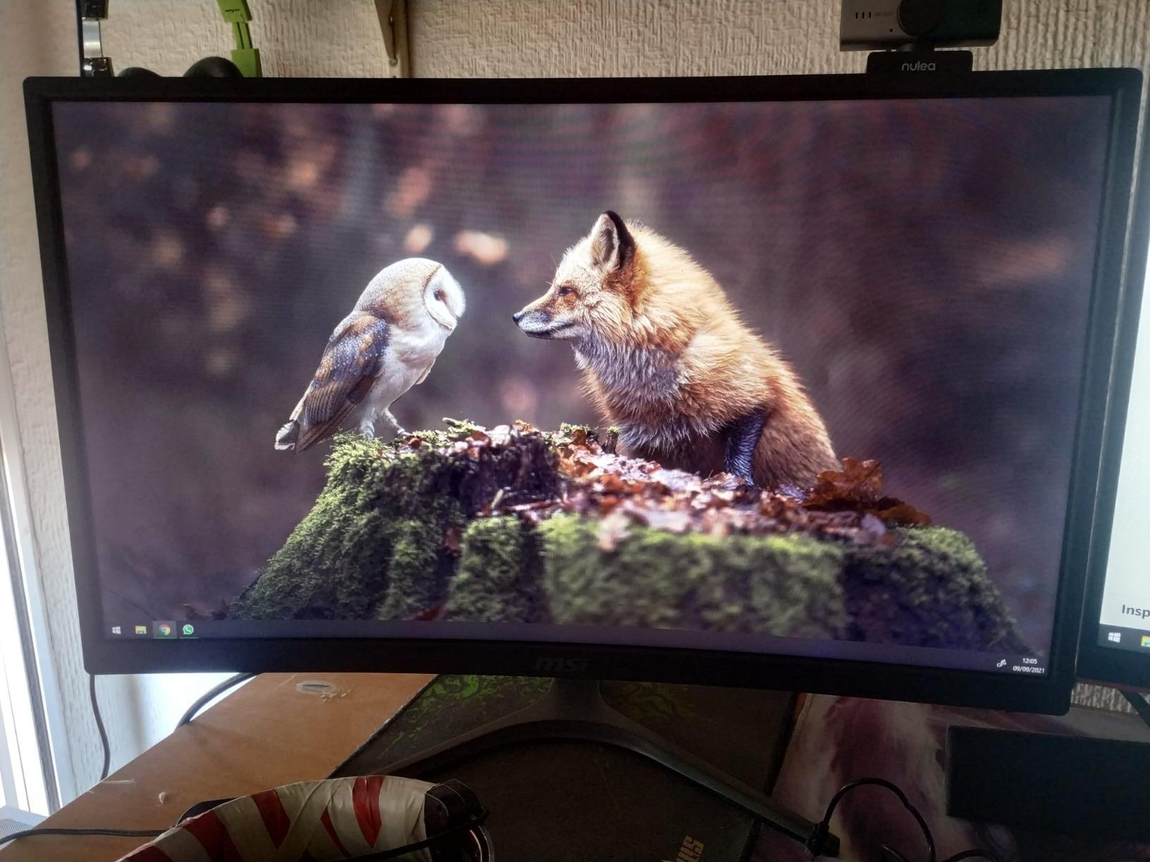 """MSI Optix G272 - Monitor de 27"""" FullHD 144Hz (1920x1080p, ratio 16:9, Panel IPS, 1 ms respuesta, brillo 250 nits, Anti-glare) negro, compatible con consolas"""