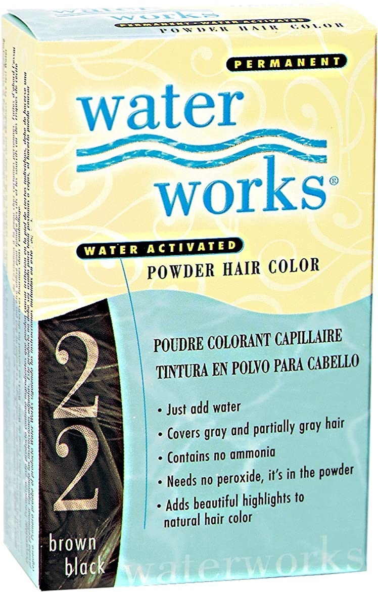 付属品パトワ報復するWaterworks Permanent Powder Hair Color #22 Brown Black by Water Works