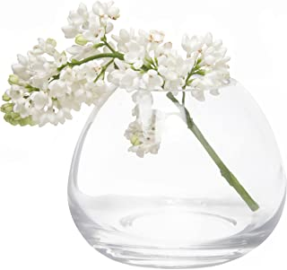 Chive - Set 6 George Shape 3, 3 Inch Wide 3 Inch Tall Unique Clear Glass Flower Vase, Small Elegant Oval Bud Vase, Decorative Floral Vase