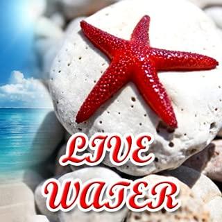deep sea live wallpaper
