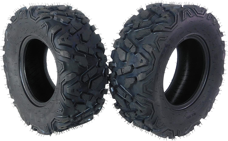 MASSFX SL251012(x2) Big Horn 6PLY 25x10-12 Rear ATV Tire, 2 Pack