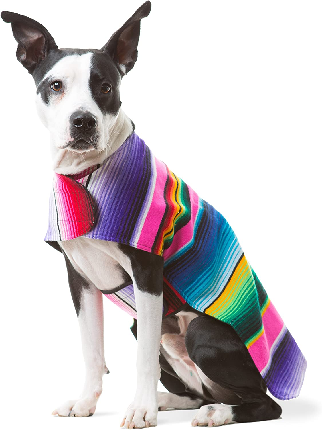 Baja Ponchos Dog Clothes  Handmade Dog Poncho from Authentic Mexican Blanket (Pink No Fringe, XXL)
