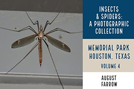 Insects & Arachnids: A Photographic Collection: Memorial Park: Houston Texas - Volume 4 (Arthropods of Memorial Park) (English Edition)