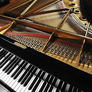 Best moonlight sonata movement 3 Reviews