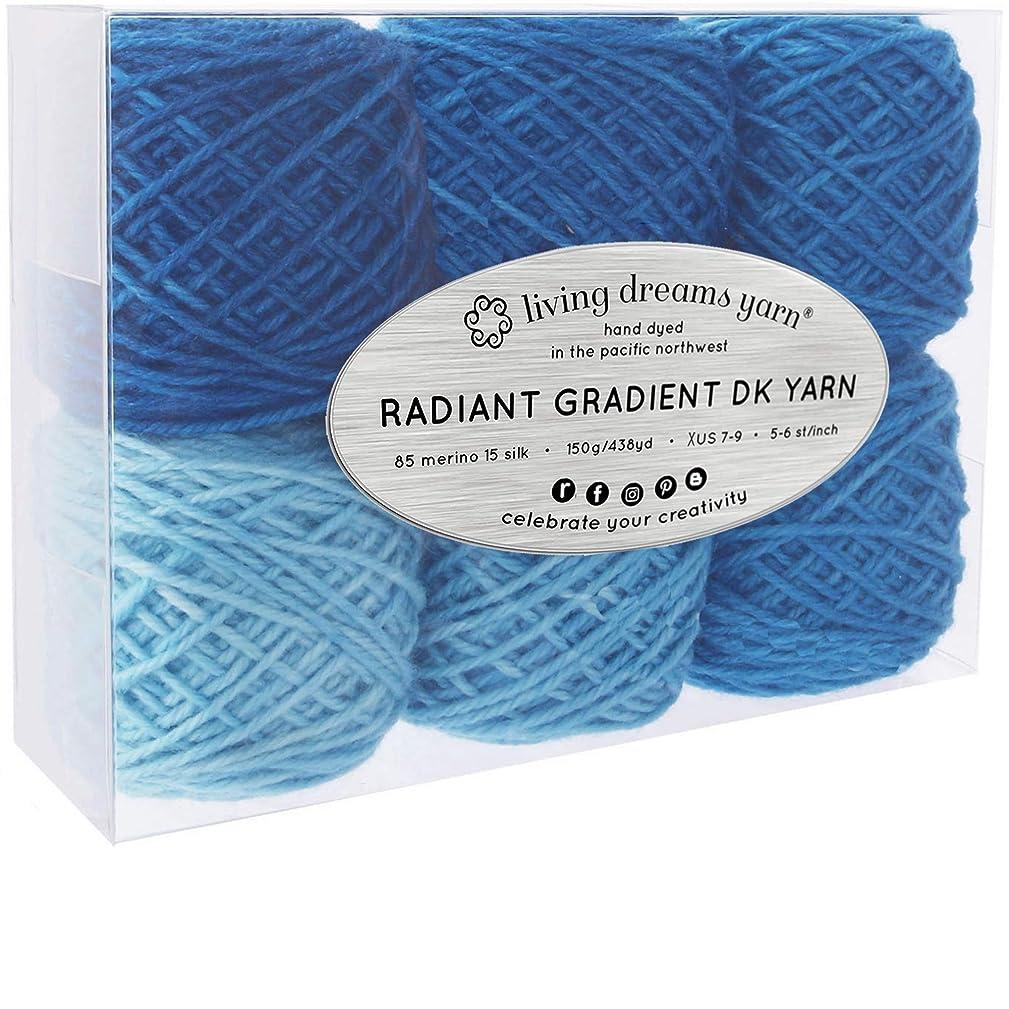 Living Dreams Radiant Gradient DK Yarn. Super Soft Merino Silk. USA Hand Dyed: Aegean Sea
