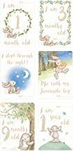 Jellycat Bashful Bunny Baby's First Milestone Cards, 4 x 6 inches
