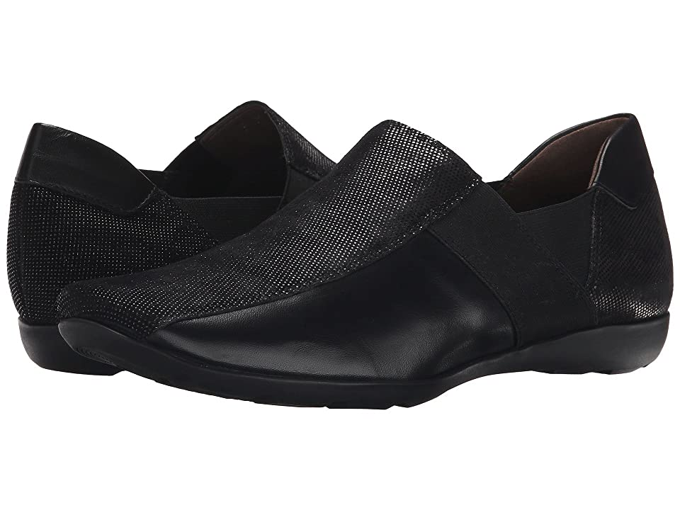 Sesto Meucci Graham (Black Lab/Soft Black New Calf/Black Elastic) Women