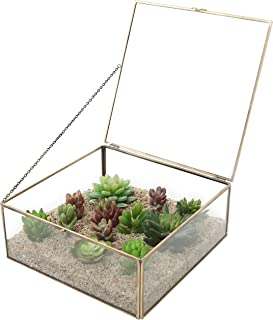 MyGift Vintage Brass & Clear Glass Decorative Box, Plant Terrarium Display, Jewelry Organizer with Latching Lid