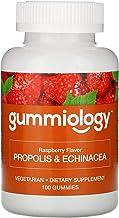 Gummiology Adult Propolis & Echinacea Gummies, Natural Raspberry Flavor, 100 Vegetarian Gummies