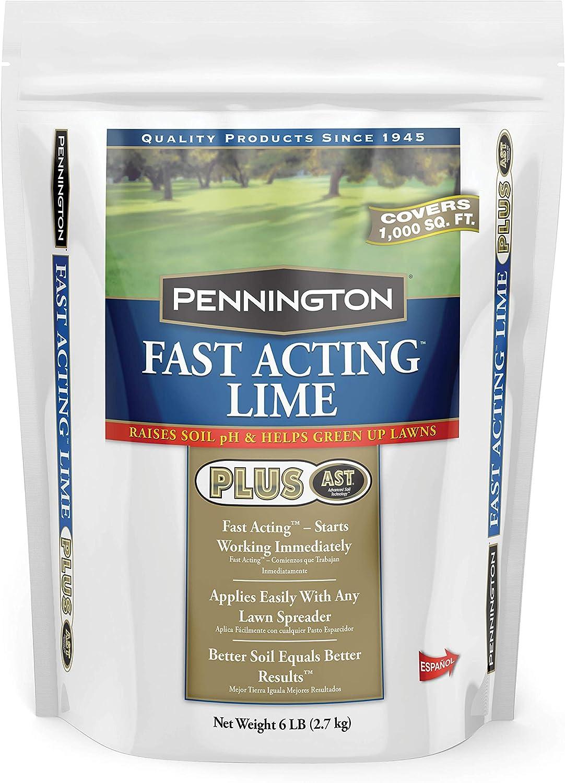 Pennington Mesa Mall Fast Detroit Mall Acting Lime 6 lb Amendment Soil