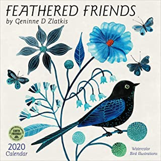 Feathered Friends 2020 Wall Calendar: Watercolor Bird Illustrations