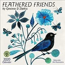 Feathered Friends 2020 Wall Calendar: Watercolor Bird Illustrations