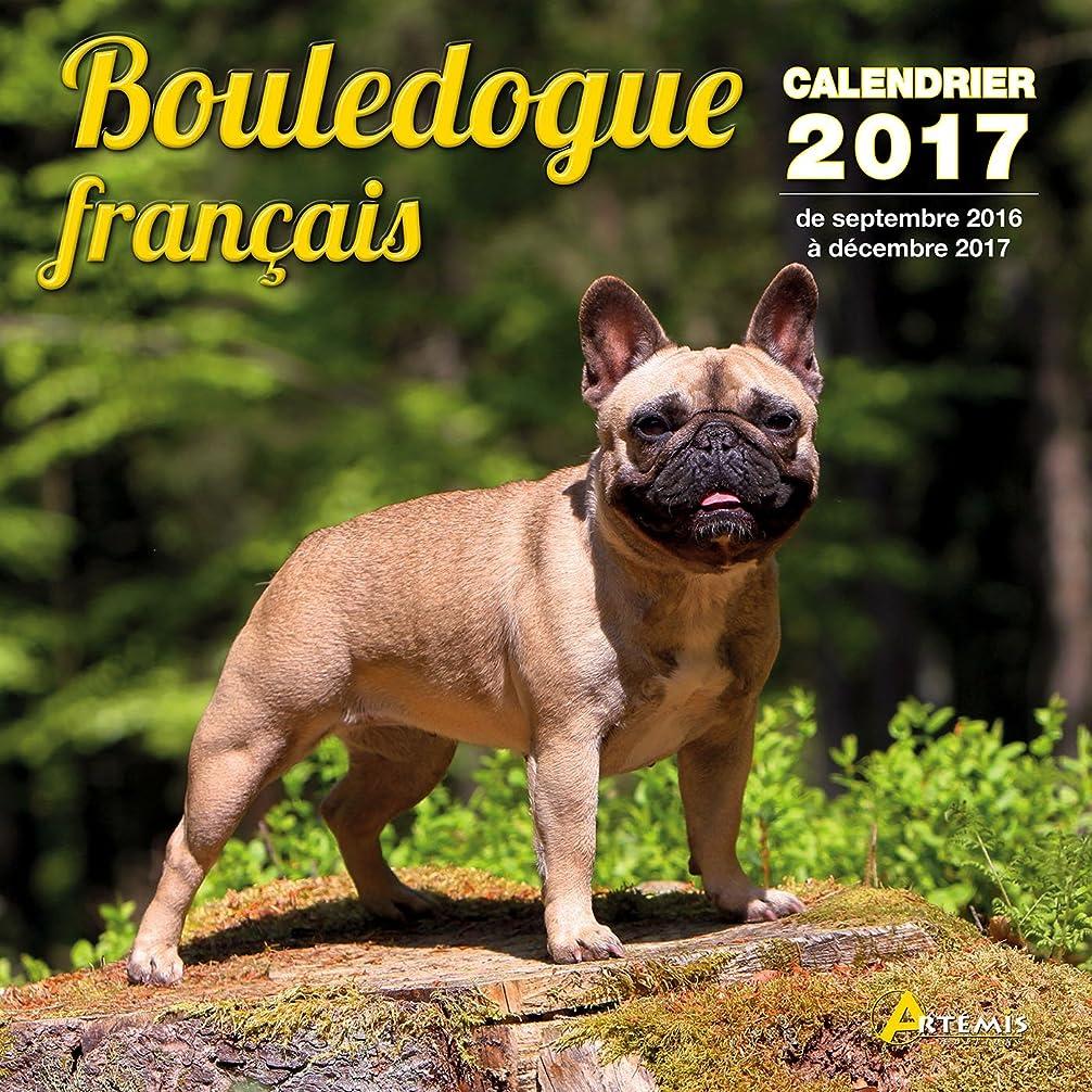 大事にする倍率強制的Calendrier bouledogue fran?ais