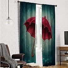 Mozenou Polyester Microfiber Window Curtains Winter,Authentic Retro Wooden Handle Under Fall Rainfall Torrent of Rain Urban Image Art Print,Teal W96 x L96 Inch
