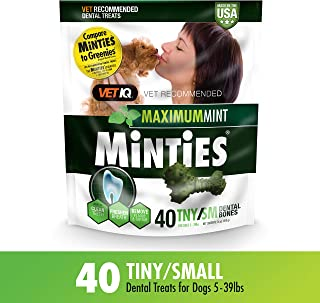 VetIQ Minties Dog Dental Bone Treats, Dental Chews for Dogs, (Perfect for Tiny / Small Dogs under 40 lbs)