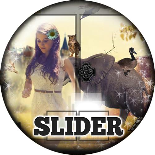 Into the Wild Slider