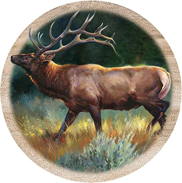 Thirstystone 饮料杯垫套装麋鹿