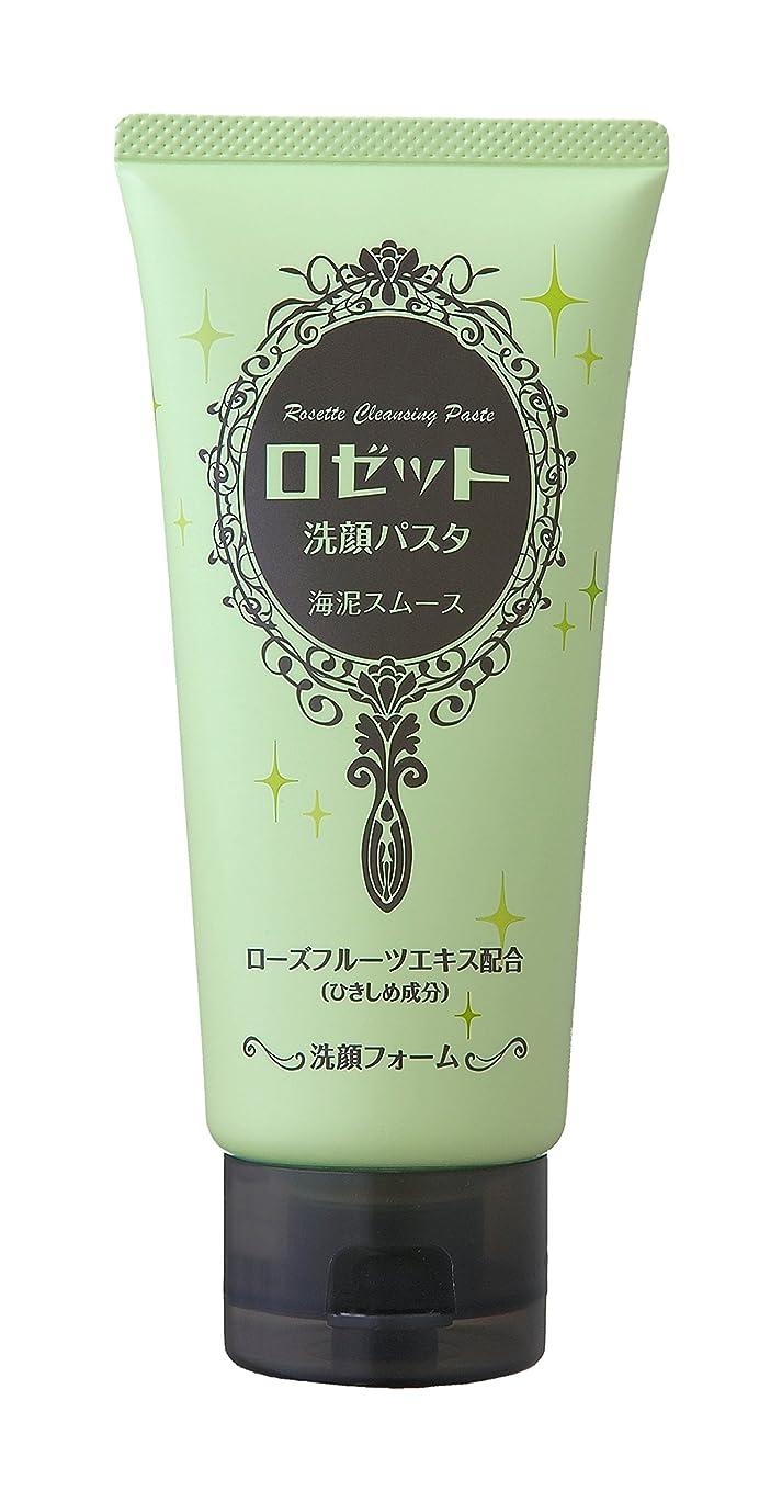 ゲームリスクイソギンチャクロゼット洗顔パスタ 海泥スムース 120g
