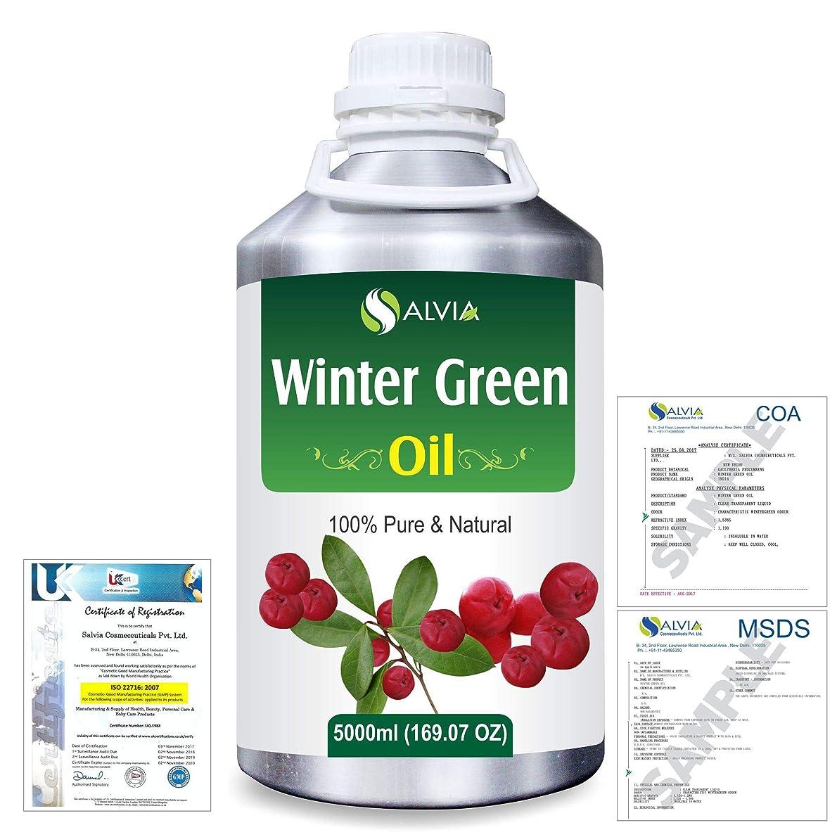 今項目懸念Winter Green(Gaultheria Procumbens) 100% Natural Pure Essential Oil 5000ml/169fl.oz.