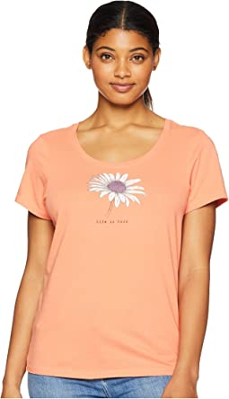 Beautiful Daisy Crusher Scoop Neck T-Shirt