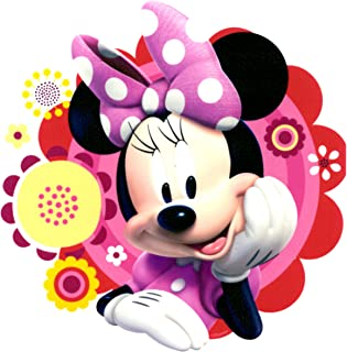 Whimsical Practicality Edible Icing Image for 1/4 Sized Sheet Cake, Minnie Mouse