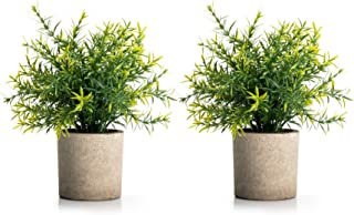 Velener Mini Potted Plastic Fake Green Plant for Home Decor (Set of 2)