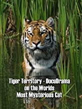 Tiger Territory - DocuDrama on the Worlds Most Mysterious Cat