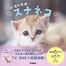 表紙: 砂漠の天使 スナネコ | 神戸どうぶつ王国