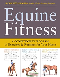 horse exercise program