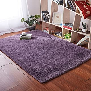 Softlife Fluffy Area Rugs for Bedroom 4' x 5.3' Shaggy Floor Carpet Cute Rug for Girls Kids Living Room Nursery Home Decor, Grey-Purple