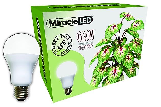 Best grow light bulbs for plants | Amazon com