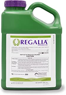 Regalia Biofungicide, 1 Gallon, Fungicide inhibits fungal and bacterial disease boosting yield, 0-Day PHI, 4 Hour REI, OMRI Listed (4)
