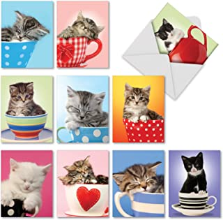 10 All Occasion Cat Cards 4 x 5.12 inch - Cute 'Cup-Cats' Baby Kitten Greeting Cards with Envelopes - Assorted Blank Note Cards for Cat Lovers - Funny Animal Stationery Notecards M3969