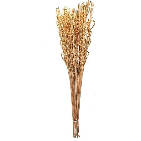 CRAFTWAFT Handmade Gold Palm Chain Flower Bunch Dry Flower Stick (Golden)
