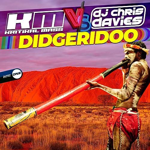 Kritikal Mass vs. DJ Chris Davies - Didgeridoo