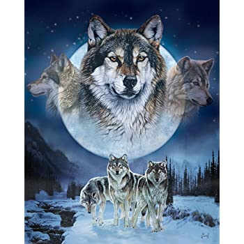 Regal Comfort Al Agnew Collection Officially Licensed Medium Weight Queen Size Cozy Plush Wolves Blanket 5951220