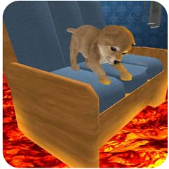 Play as cute puppy and eat sweets in beautiful house Clear all missions with the help of amazing jumps Choose your favorite attractive puppies by unlock next levels 3D graphics with smooth controls