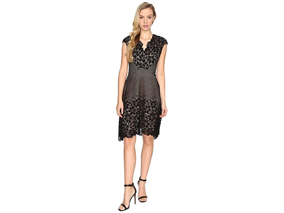 Maggy London Grid Flower Border Lace Fit and Flare Dress (Black) Women