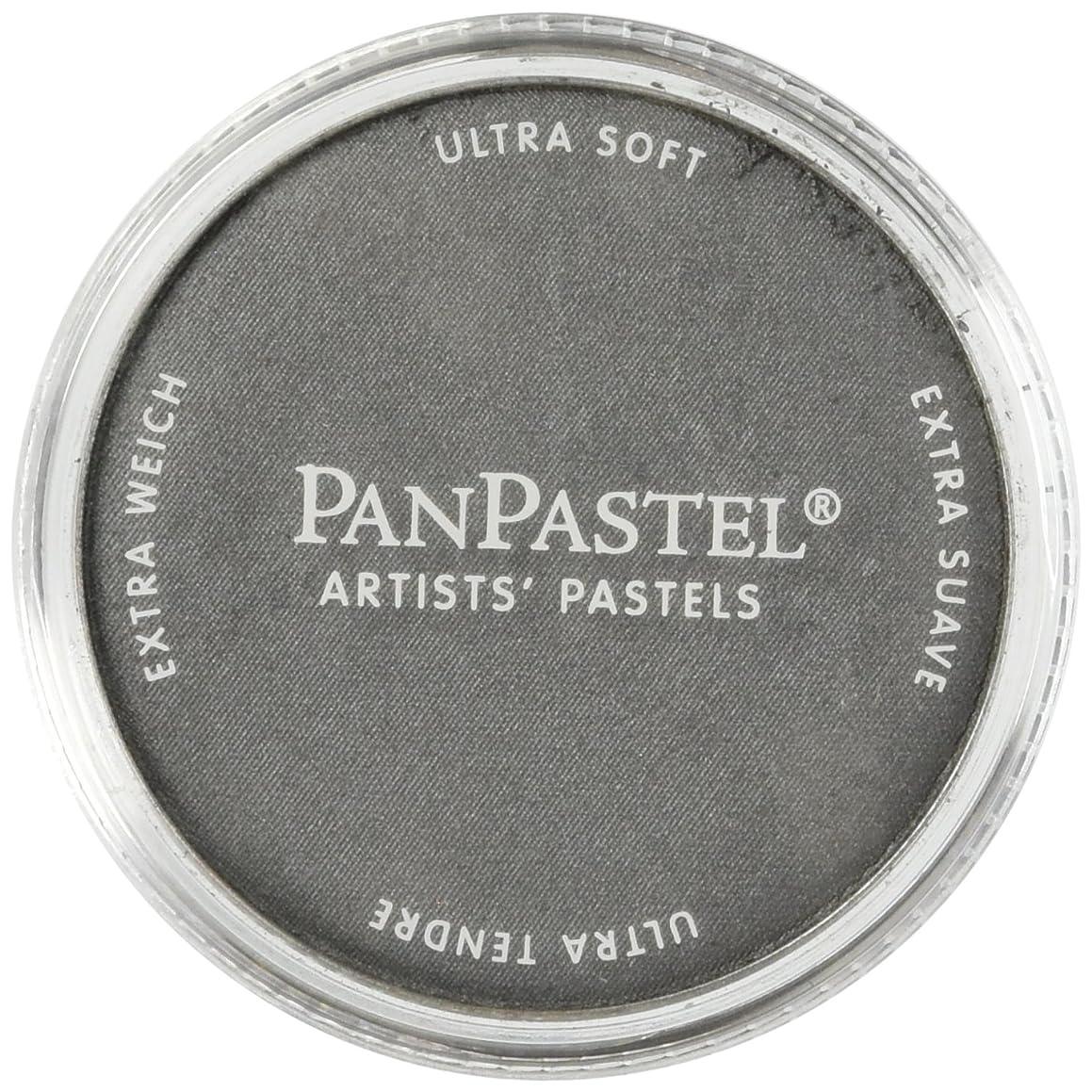 Colorfin PanPastel Ultra Soft Metallic Artist Pastels, 9ml, Pewter