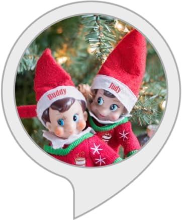 Unofficial Elf on the Shelf Ideas